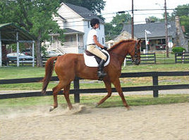 June 2011 The Warrenton Dressage show