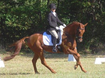 Ethan and Sharon OP1 Division at Seneca Horse Trials